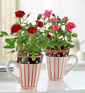 vaso6 Como decorar a casa com flores.