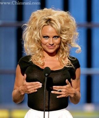 pam anderson wallpaper. actress Pamela Anderson