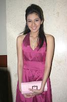 Dhini Aminarti