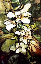 magnolia 1900