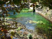 près de la source Fontaine de Vaucluse