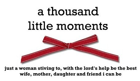 A Thousand Little Moments