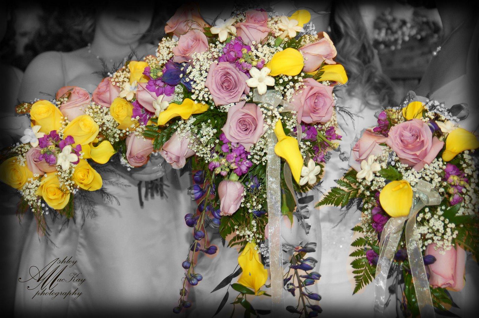 [Cassandra+&+Nicks+Wedding+359FB.jpg]