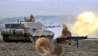 SQUIRRELS ARMY