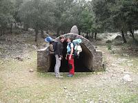 Les al·lotes al pla de l'aljub (ruta Esporles- Valldemossa)