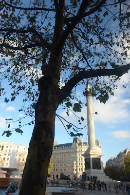 Nelson's column obscured by a tree