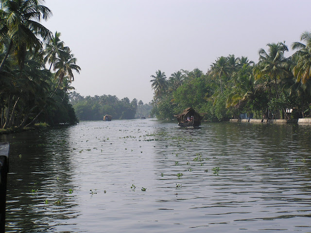 Houseboat making its way through the waterways of Kerala, India, with leaves and other greenery on the water surface