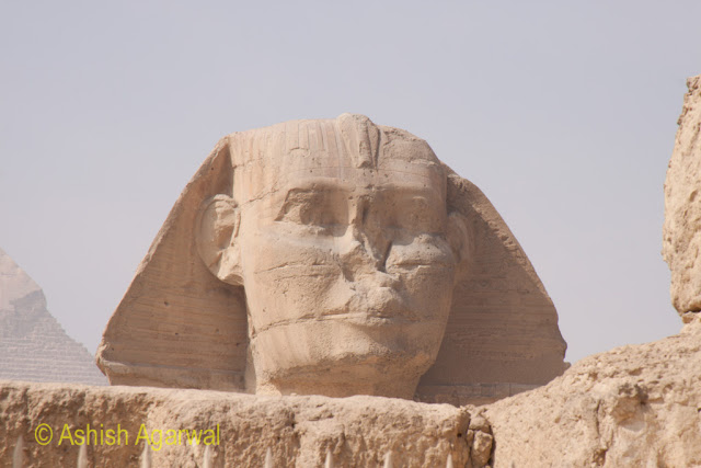 Cairo Pyramids - view of the face of the Sphinx