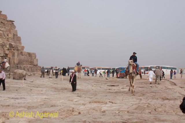 Cairo Pyramid - Tourists riding camels right next to the Great Pyramid in Giza