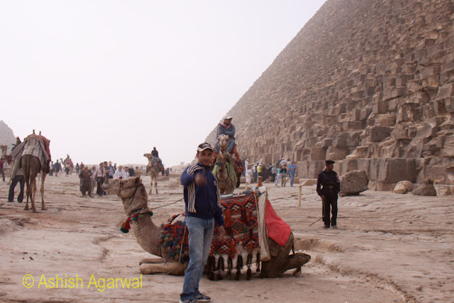 Great Pyramid - A decorated camel right next to the Great Pyramid, ready for tourists