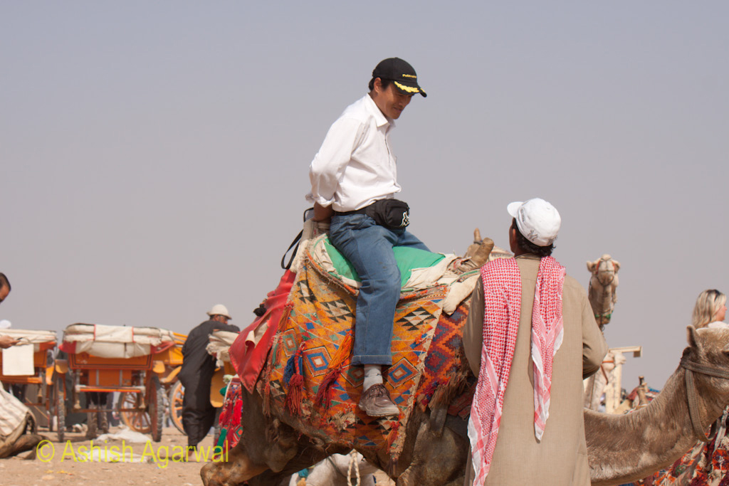 Tourist starting to climb a camel at the Panorama point in Giza, near the Great Pyramid