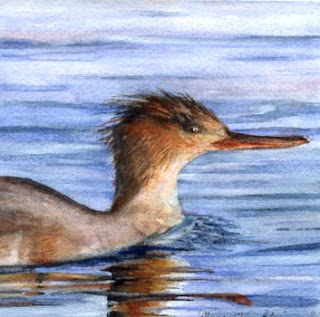 Merganser - Nancy Van Blaricom