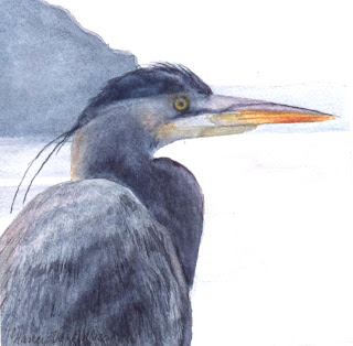 Great Blue Heron #1 -Nancy Van Blaricom