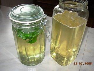 [Louhisaaren+juoma]