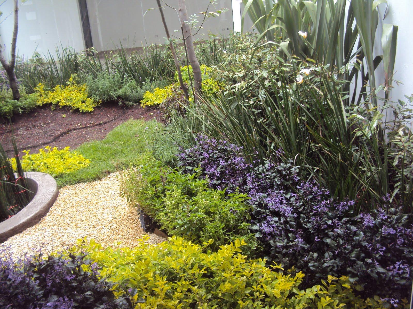 Espacios verdes jardines con plantas ar maticas for Jardinera plantas aromaticas