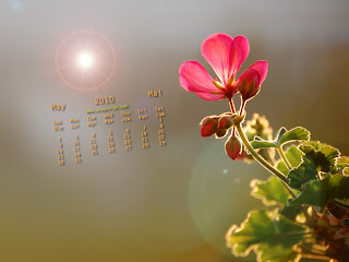 May 2010 Calendar Wallpapers