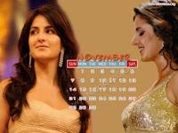 Katrina Kaif 2010 November Calendar