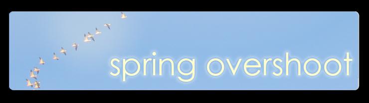 Spring Overshoot