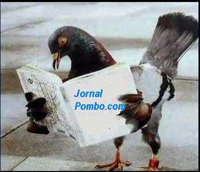 Pombo.com
