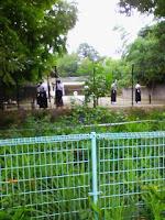 埼玉県越谷市緑の森公園にある弓道場の練習風景の巻。