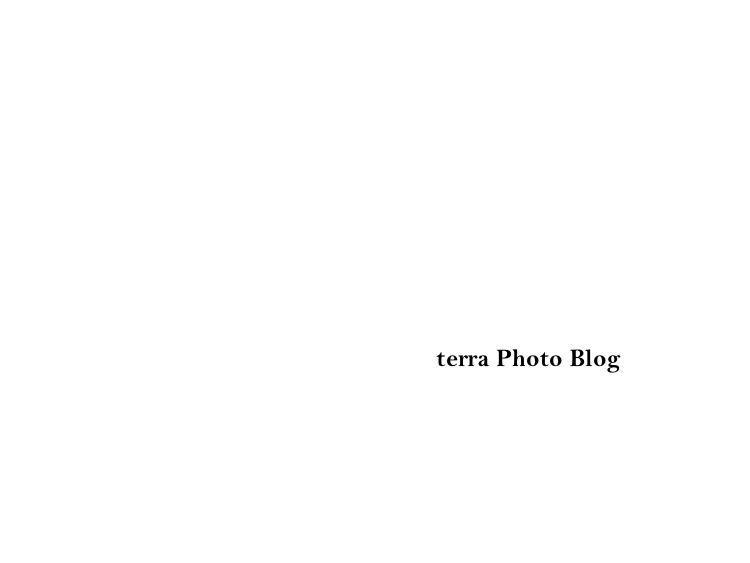 terra photo blog