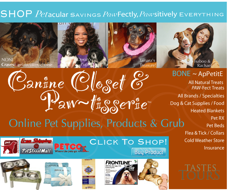 Oprah, Rachael Ray Love Their Dogs Just Like You ~ Here's The Store Your Pet Will Love You For
