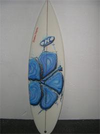 SURFBOARDS ART