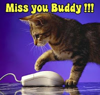 Miss You Buddy Card