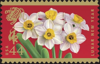 Narcissus Chinese New Year Card