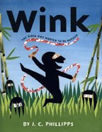 Wink, The Ninja Who Wanted to Be Noticed