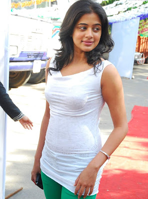 tollywood actress priyamani hot photos gallery