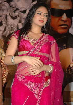 tollywood-actress-nikisha-patel-in-saree-blouse-photos-gallery+123actressphotosgallery.com