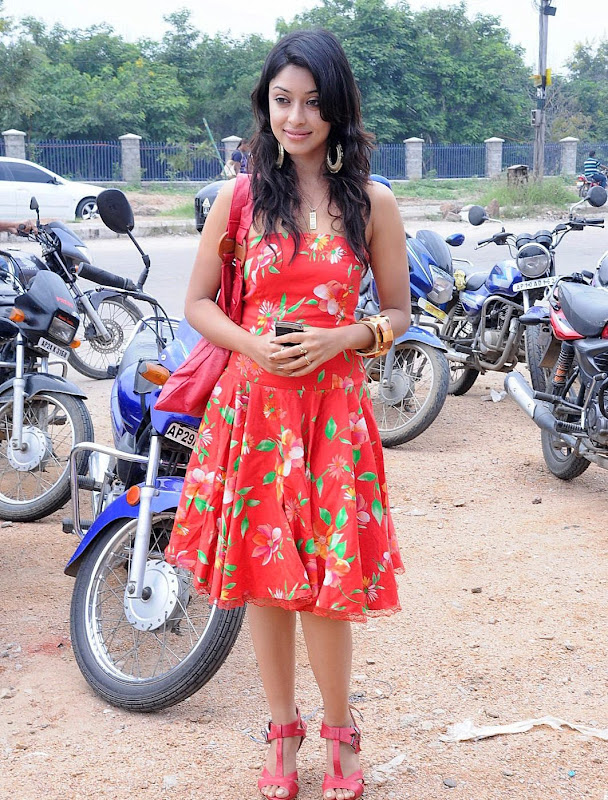 Tollywood Actress Payal Gosh Photos Gallery cleavage