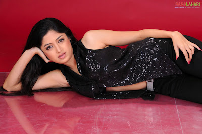 Desi tollywood Girl Actress Poonam Kaur Hot Wallpapers
