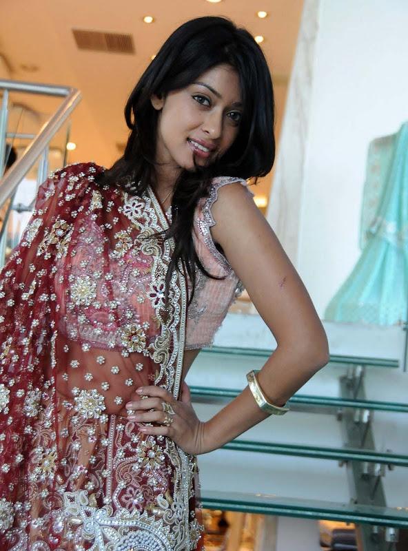 Actress Payal Gosh Hot Stills hot photos