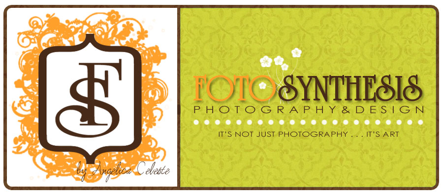 Fotosynthesis Photography