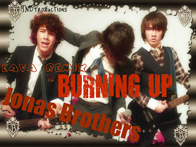 the jonas brothers burning up canvas