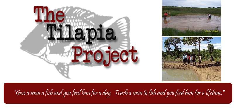 The Tilapia Project