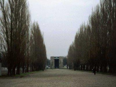 I pioppi di Dachau