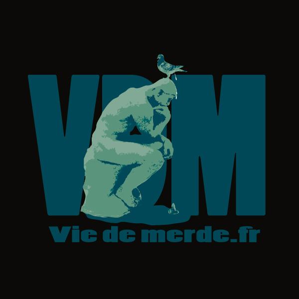 Viedemerde