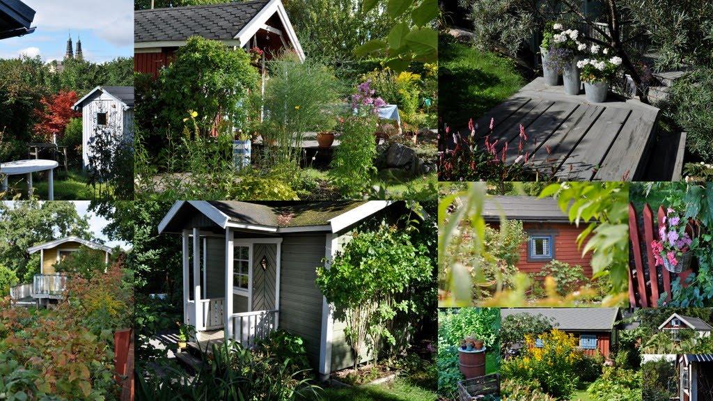 Visite dans un petit jardin de ville de stockholm crossroads for Petit jardin de ville