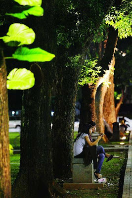 http://2.bp.blogspot.com/_8isAxDpsZ74/TF63yr2rMlI/AAAAAAAAEus/yRNTKK2fVU8/s1600/malam+di+taman.jpg