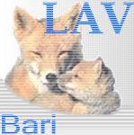 Lav Bari Adozioni