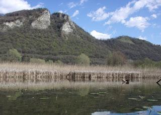 Palude di Brivio - fiume Adda