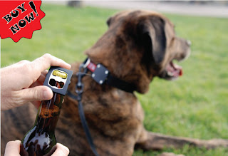 Dog Bark Colar For Sale In Essex