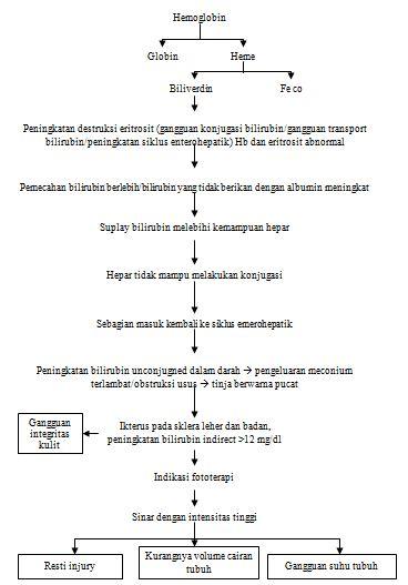 PATOFISIOLOGI IKTERUS (PENYAKIT KUNING)
