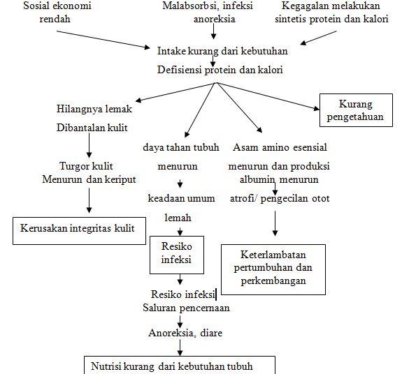 MAKALAH BATU GINJAL