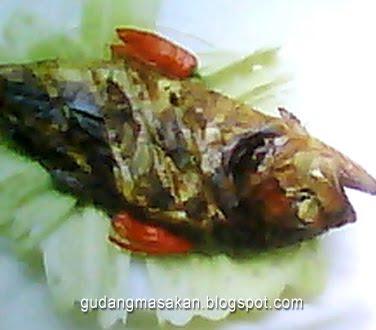 Resep Masakan Ikan Bakar