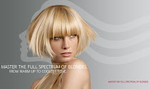 ATTENTION ALL BLONDES! & those who want to be BLONDE!