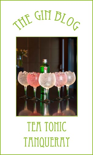 how to make a gin and tonic tanqueray